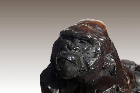 Gorille(détail)