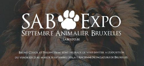 SAB EXPO 2.jpg